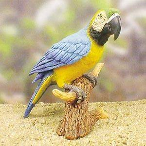Blue Parrot Statue Figurine. Home Yard & Garden Decor Products & Gifts