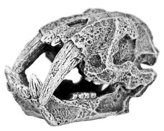 Mini 2 Saber Tooth Tiger Skull 855 ~ aquarium ornament fish tank