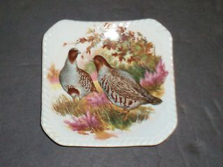 Royal Adderley Floral Fine Bone China England ~ Left Flying Mallard