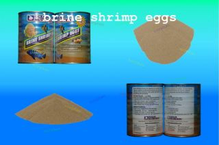 BRINE SHRIMP EGGS 100g GSL GREAT RESULTS BABY FRY FISH FOOD FOR