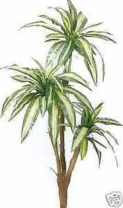 56 PALM ARTIFICIAL SILK TREE PLANT ARRANGEMENT DRACENEA TROPICAL