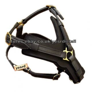 Leather Dog Harness in Harnesses
