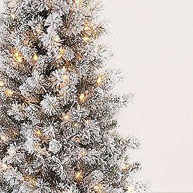 Newly listed 6.5 SNOW FLOCKED Pre Lit Christmas Tree 300 lights on 518