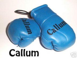 Baby Blue Mini Boxing Gloves printed Callum