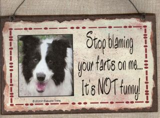 BORDER COLLIE STOP BLAMING YOUR FARTS ON ME DOG SIGN FUNNY FART GAS
