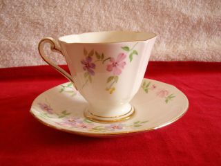 ROSLYN Hand Painted Fine Bone China CUP & SAUCER SET Made In England