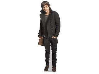 Harry Styles Life Size Cardboard Cutout Real Stand Up Merchandise One