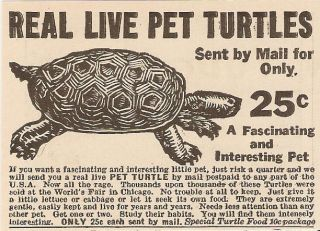 1934 REAL LIVE PET TURTLES BY MAIL FOR $.25 ADVERTISEMENT AD