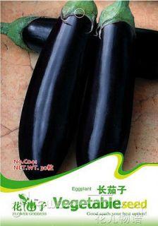 Eggplant Seed Long Nutrient Food 30 Vegetables Seeds