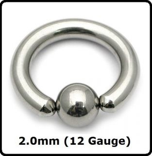 ) Large Gauge Steel BCR, Ball Closure Ring, Prince Albert, PA, Ear