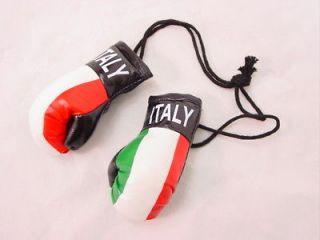 BOGO Mini Boxing Glove Sets   ITALY   Auto Dorm Decor