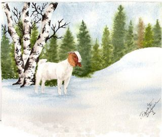 Winter Boer Goat greeting cards pack of 6 w/envelopes