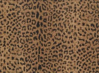 leopard print wallpaper in Home Improvement