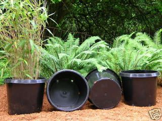 plastic nursery pots in Planters, Pots & Window Boxes