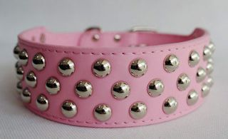 pink studded dog collar in Spiked & Studded Collars