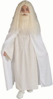 gandalf costume in Costumes, Reenactment, Theater