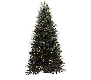 Bethlehem Lights 6.5 Balsam Fir Christmas Tree Clear Color LED Lights