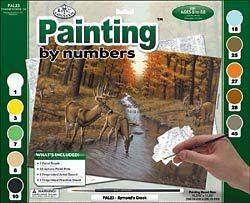 Adult Paint By Number Kit 15 3/8X11 1/4​ Symonds Creek