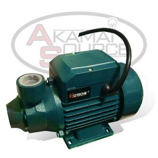 Cast Iron Clear Water Pump 650 GPH 1/2 HP Electric Pond Pool NR