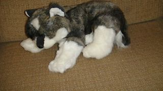 14 2006 ty Beanie Buddies Brown White Wolf Dog Blue Eyes Plush