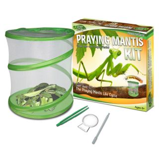 Fascinations GE101 Earth Praying Mantis Kit   Green Net Habitat