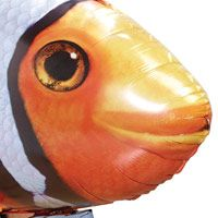 Air Swimmers eXtreme Radio Control Giant Flying Clownfish   Toys R Us