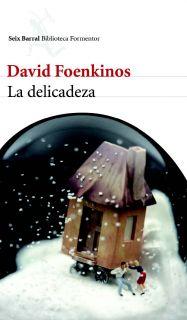 LA DELICADEZA   DAVID FOENKINOS. Resumen del libro y comentarios