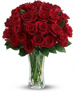 Love and Devotion   Long Stemmed Red Roses Flowers, Love and Devotion