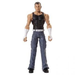 WWE Flexforce Action Figure   Matt Hardy   Toys R Us   Action Figures