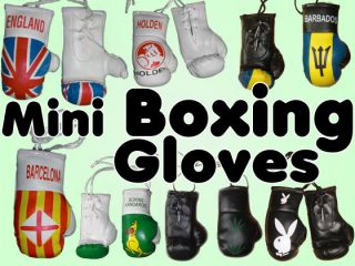 Mini boxing gloves of country flags, various design to carry, decor