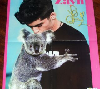 Directions Zayn Malik Kissing Koala Bear 16x20 Poster bw Harry Styles