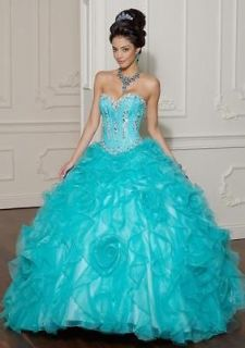 2013 Custom Rose flower Beaded Quinceanera Prom Ball Gowns Evening