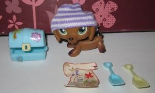 139 Brown Dachshund W/ Pirate Accessories Littlest Pet Shop Dog #307
