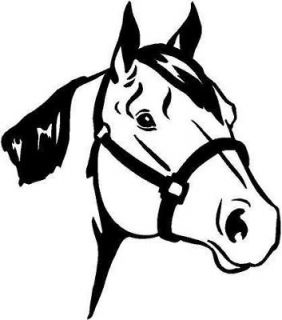 quarter horse head vinyl decal car truck window sticker time