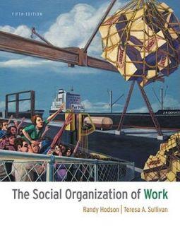The Social Organization of Work by Randy Hodson and Teresa A. Sullivan