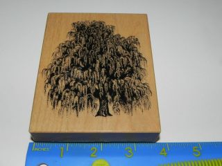 1995 psx k 1455 weeping willow tree rubber stamp time