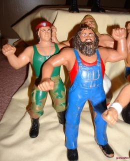 Titan Sports WWF Pro Wrestling Action Figures Hulk Hogan Albano
