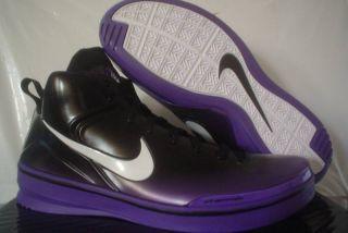 Nike Zoom Skyposite Amare Stoudemire PE Shoes 14 RARE