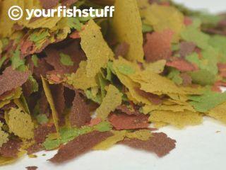 Your Fish Tropical Flakes Aquarium Fish Food One Lb