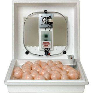 Little Giant Circulated Air Egg Incubtor with Forced Air Fan Kit Model