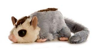Sugar Glider Plush Stuffed Toy by Aurora Babies New