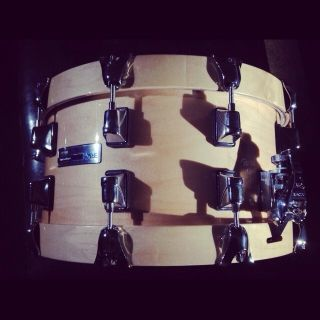 Taye Studio Maple 14x7 Snare Drum Ray Ayotte