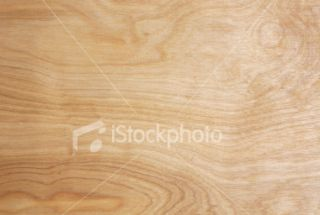 stock photo 3591644 maple wood grain background