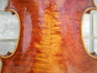 Violin Italian Label Martini Augusto faenza anno 1920 from estate