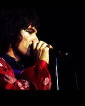 Jagger on stage, with the Rolling Stones on American tour