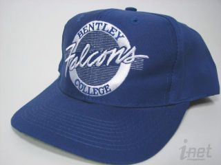 Vintage Bentley College Falcons Circle Hat The Game New