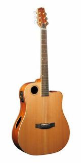 Boulder Creek Ecdg 3N Gold Series Acoustic Electric Dreadnought Guitar