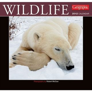 New 2012 Wildlife Wild Animals Wall Calendar B54