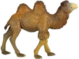 NEW CAMEL Wild Animals PAPO 50001