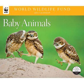 Baby Animals WWF 2013 Deluxe Wall Calendar
